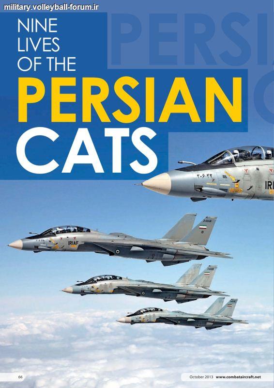 F14a تامکت/9 جان گربه های ایرانی !!
