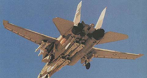 هواپیمای F-14 تامکت ایرانی در حال فرود و فول لود