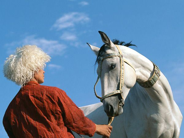 بخش نخست / اسب و اسب سواری در بین ترکمن ها